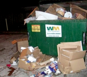 *NOT ACTUAL DUMPSTER FROM STORY* (But close.)