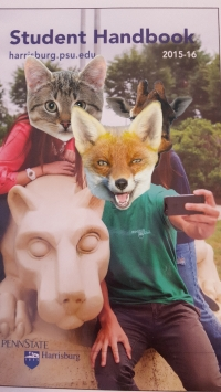 My friend is the fox in the green tee shirt.